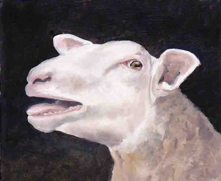 """Sheep face"" original fine art by Charlotte Yealey"