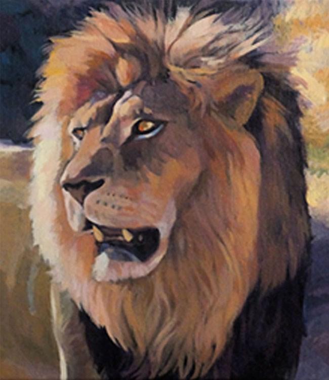 """Lion at Hluhluwe Imfolozi"" original fine art by Shawn Shea"