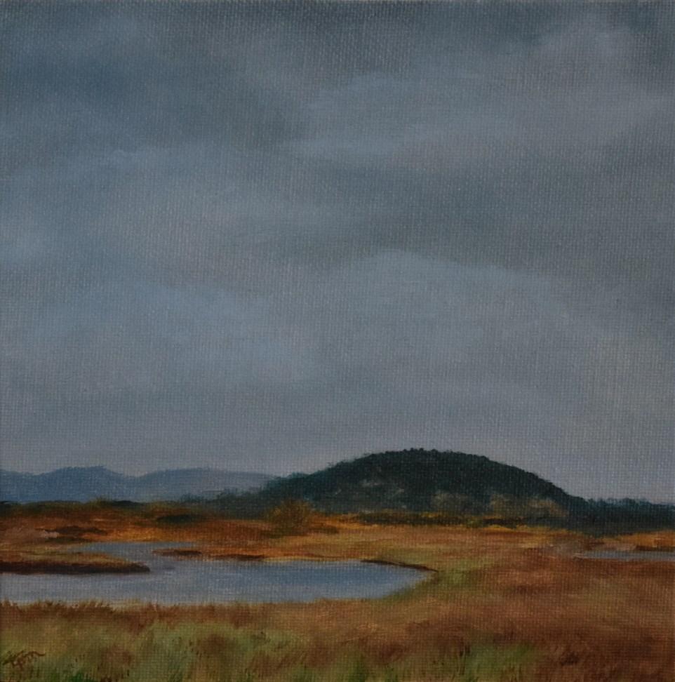 """""""Pacheco Pond - Beyond the Pond"""" original fine art by Tisha Mark"""