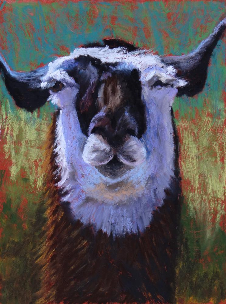 """""""Winkin' Llama"""" original fine art by Denise Beard"""