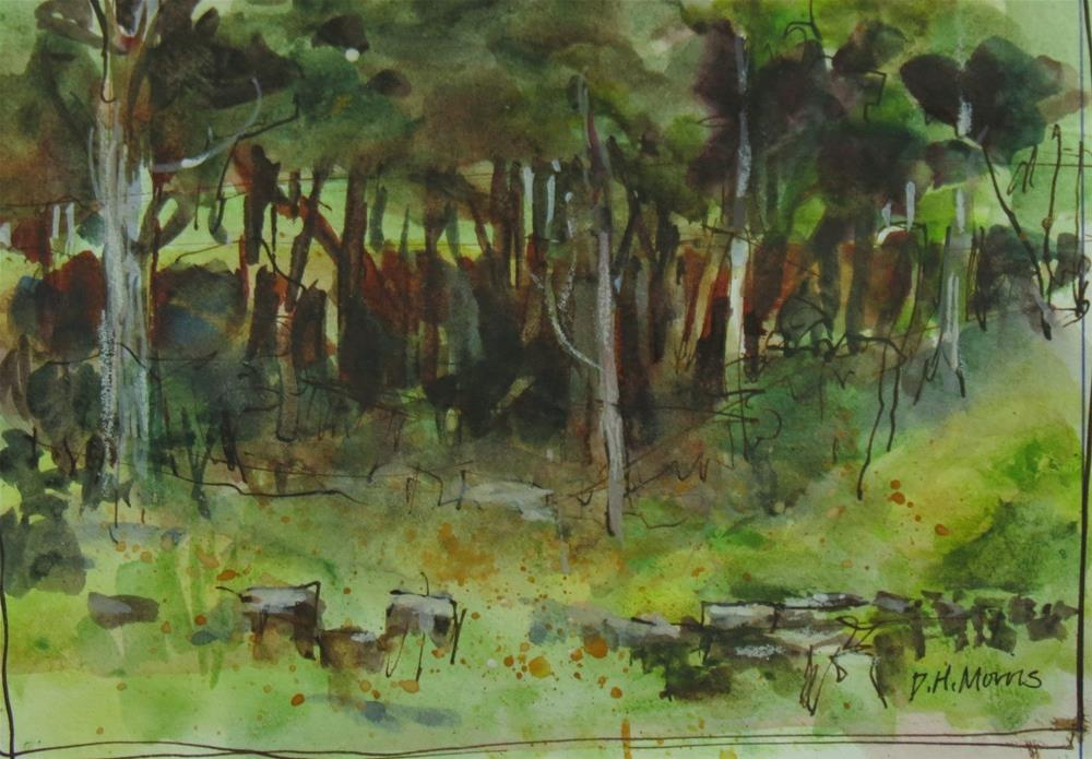 """Woodland Sketch Saddlebrooke MO"" original fine art by Dann Morris"