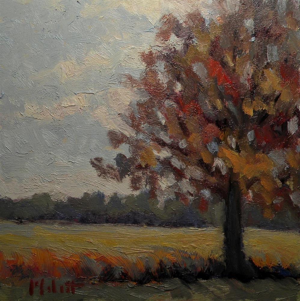 """Warm Earth Tones Landscape Oil Painting"" original fine art by Heidi Malott"
