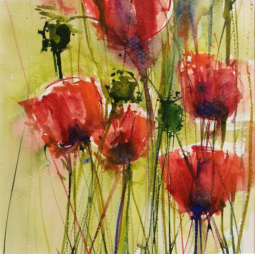 """Poppies 3"" original fine art by Marlena Czajkowska"