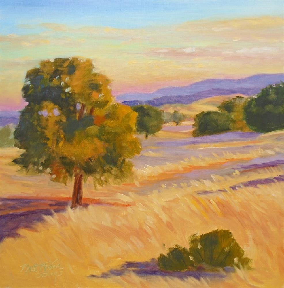 """Sunrise Foothill Shadows"" original fine art by Rhett Regina Owings"