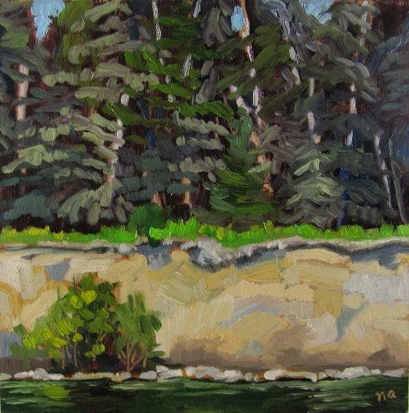 """""""White Cliffs by Seven Mile Beach, Waskesiu"""" original fine art by Nicki Ault"""