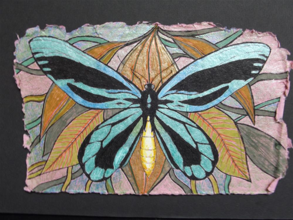 """Queen Victoria's Birdwing"" original fine art by wanda sigafus"