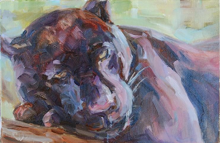 """""""Beauty Rest"""" original fine art by Carol DeMumbrum"""