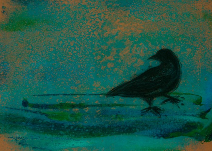 """Crow 1"" original fine art by Jana Johnson"