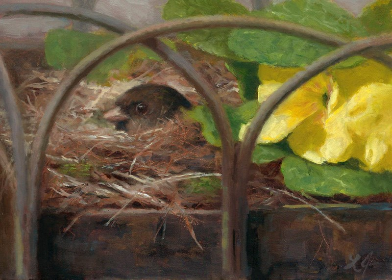 """Stage 3 Mama Sitting on Her Eggs"" original fine art by Linda Jacobus"
