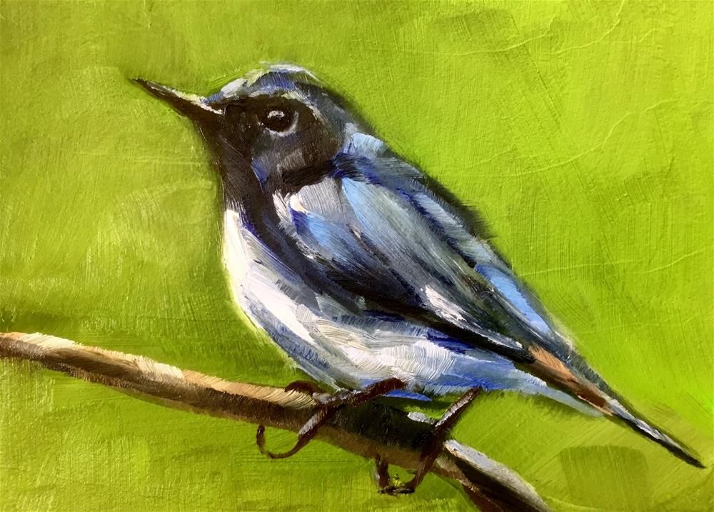 """Black-throated Blue Warbler"" original fine art by Gary Bruton"