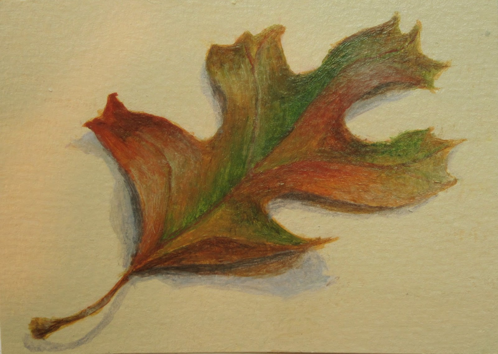 """""""Touch of Fall"""" original fine art by Debbie Shirley"""