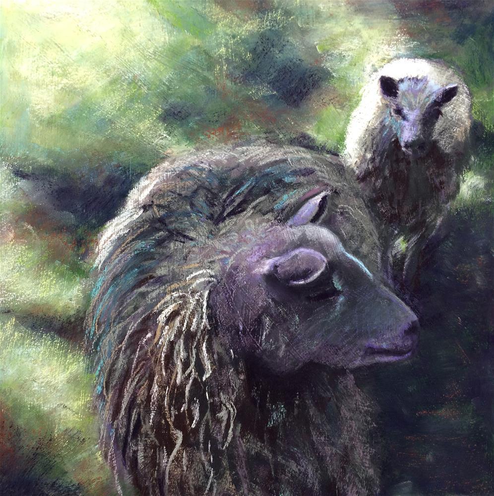 """Dappled Sheep"" original fine art by Cristine Kossow"