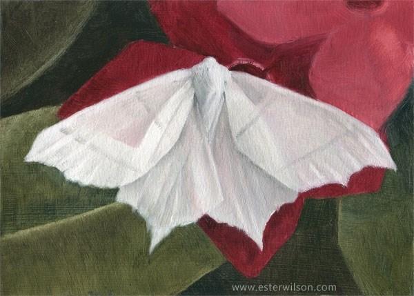 """Lace Moth"" original fine art by Ester Wilson"