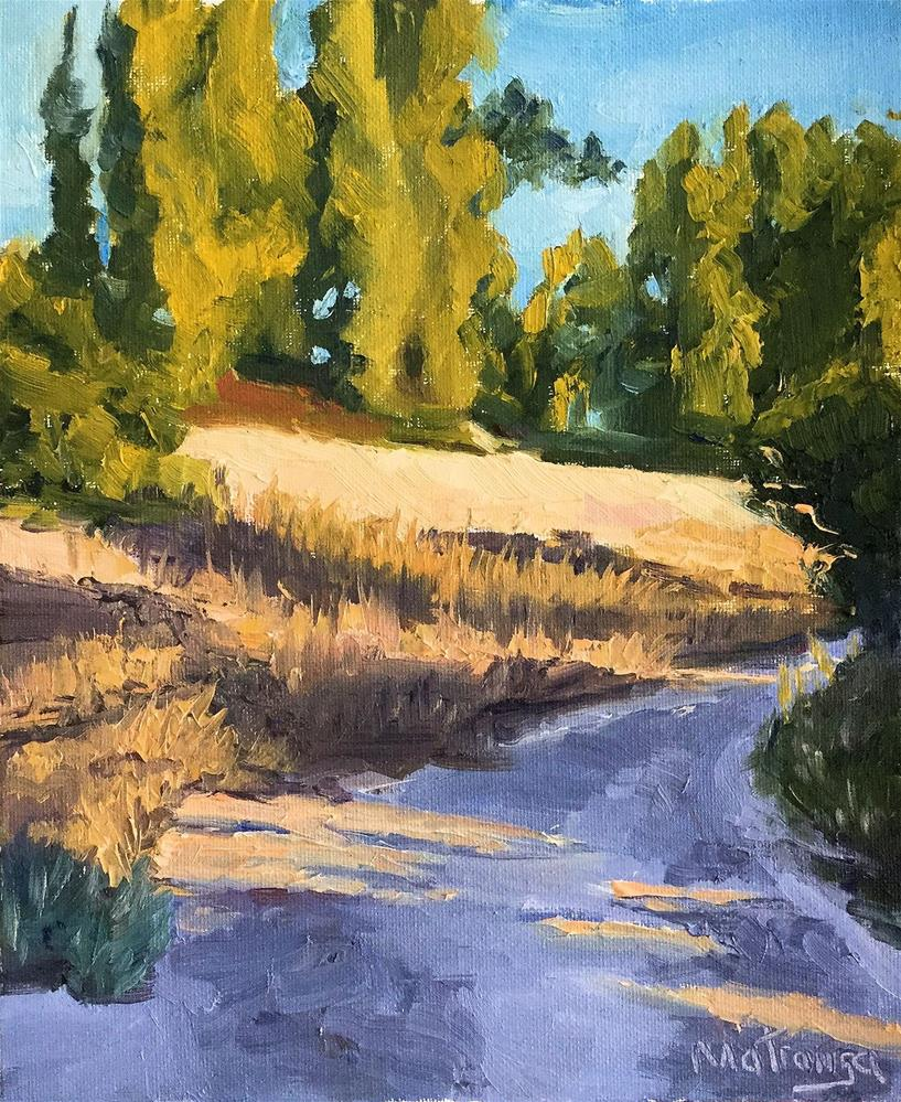 """Summer Evening Walk"" original fine art by Patricia Matranga"