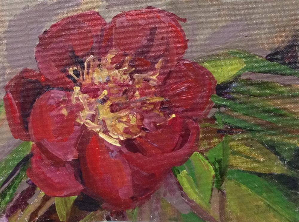 """Tree Peony Blossom"" original fine art by Patti McNutt"
