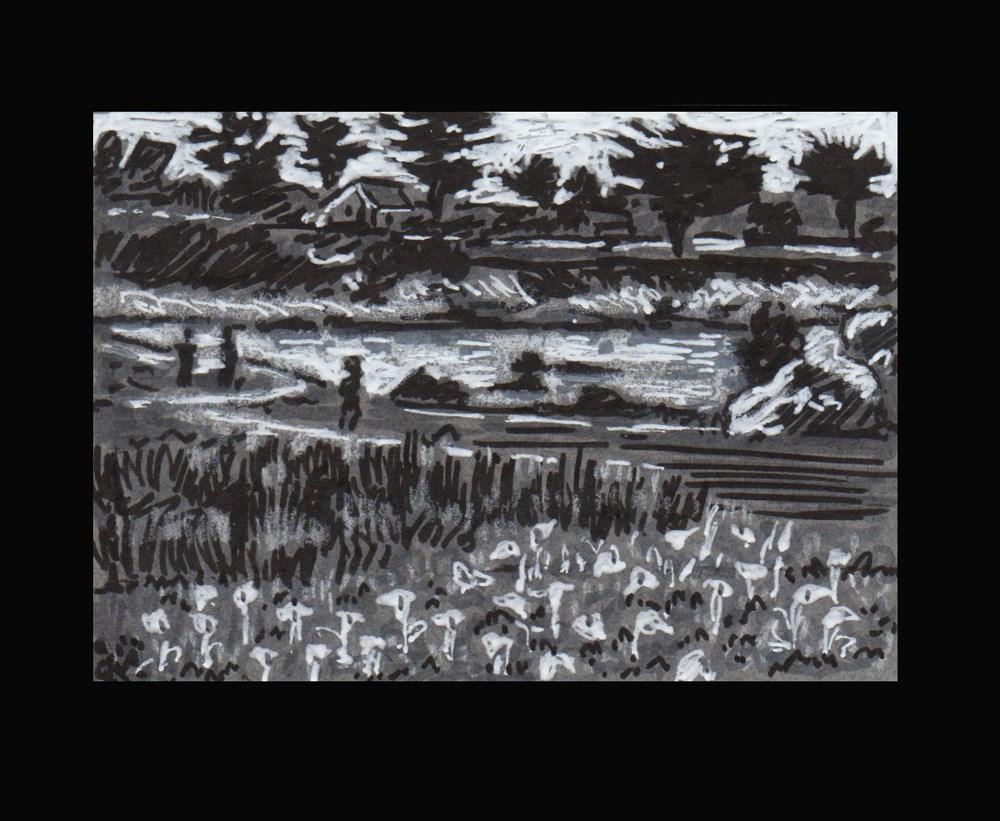 """Calla Lilies in Pacific Grove - ACEO"" original fine art by Rhett Regina Owings"