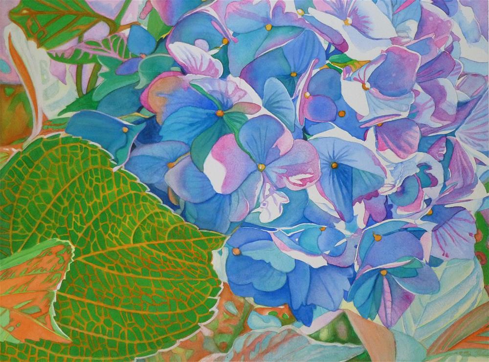 """Hydrangea"" original fine art by Christine Anagnostis"