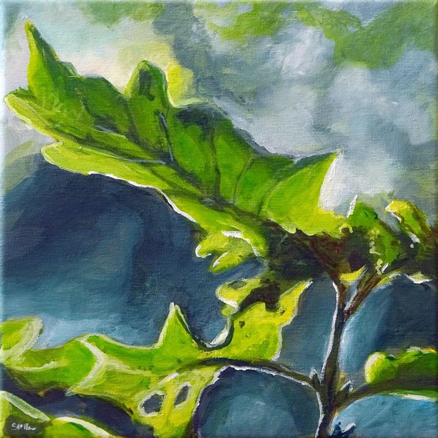 """""""1165 Quercus Robur"""" original fine art by Dietmar Stiller"""