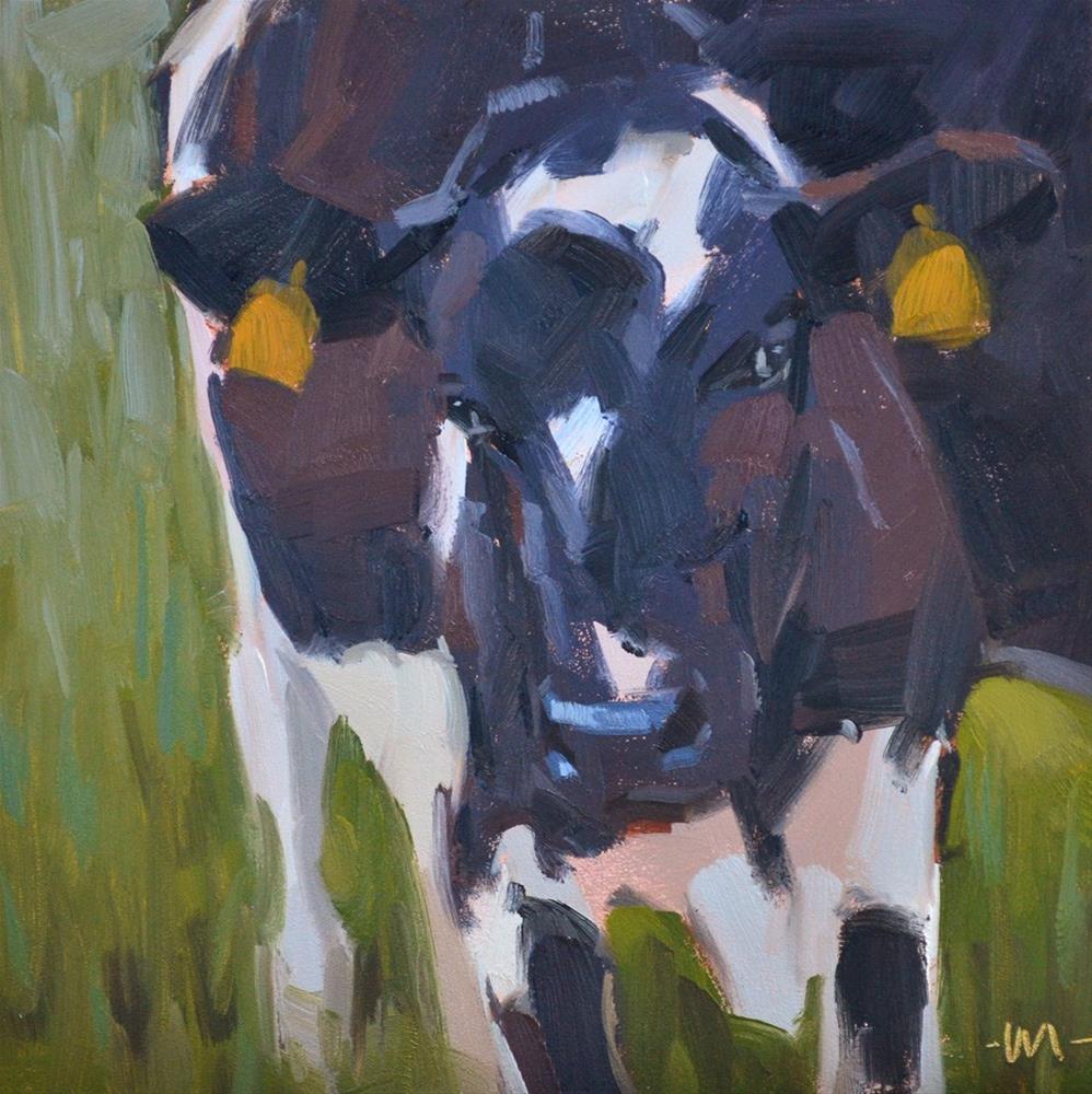 """Coy Cow"" original fine art by Carol Marine"