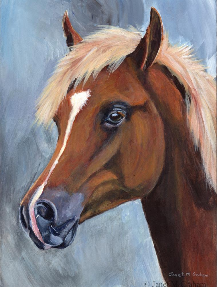 """Arabian Colt"" original fine art by Janet Graham"