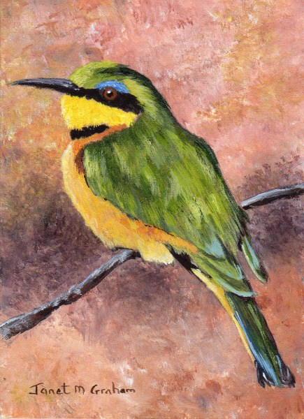 """Little Bee Eater ACEO"" original fine art by Janet Graham"