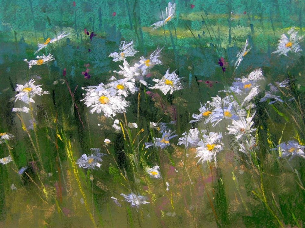 """Daisies"" original fine art by Alan Chaney"