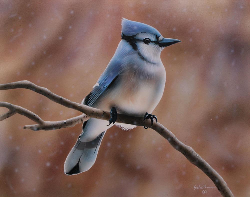 """Blue Jay on a Snowy day"" original fine art by Fred Schollmeyer"