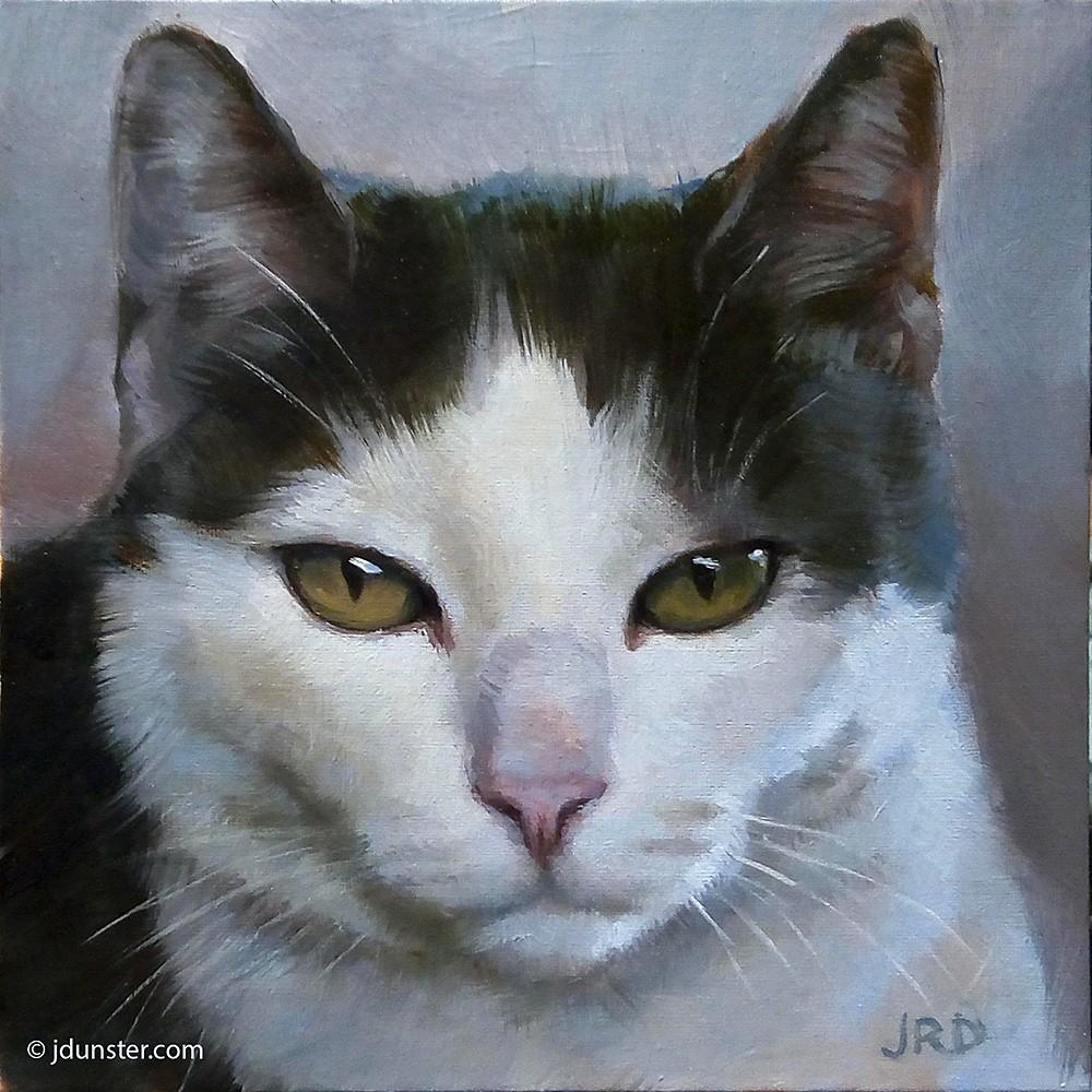 """Lazy Tuxedo Kitty"" original fine art by J. Dunster"