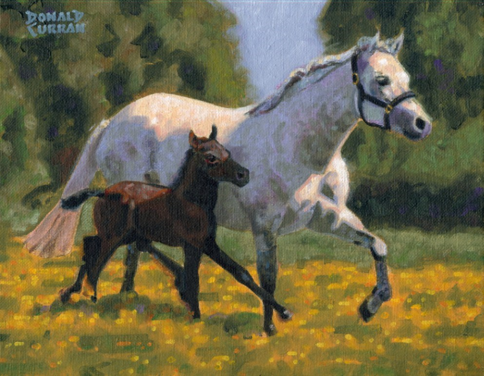 """Mare and Foal"" original fine art by Donald Curran"