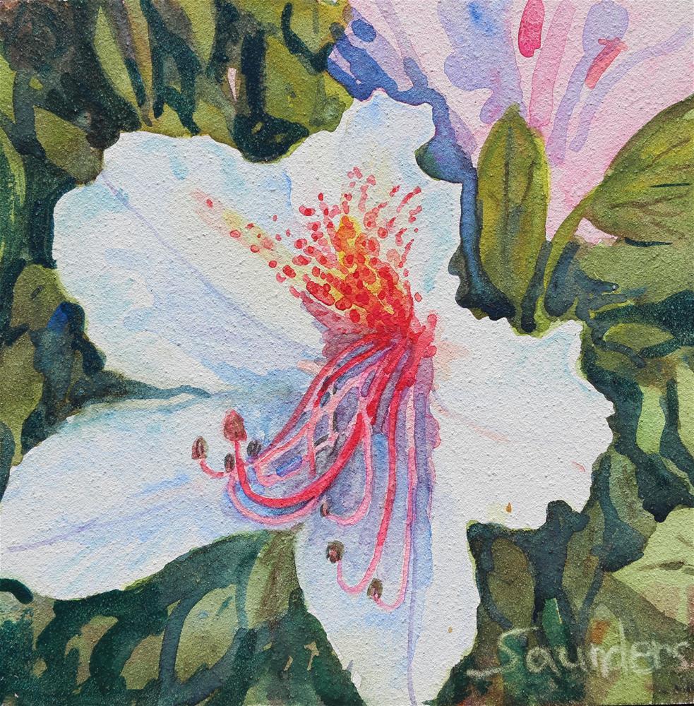 """Azalea Blossom"" original fine art by Michael Saunders"