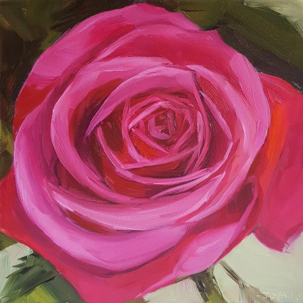 """Magenta Rose"" original fine art by Jacqueline Davis"