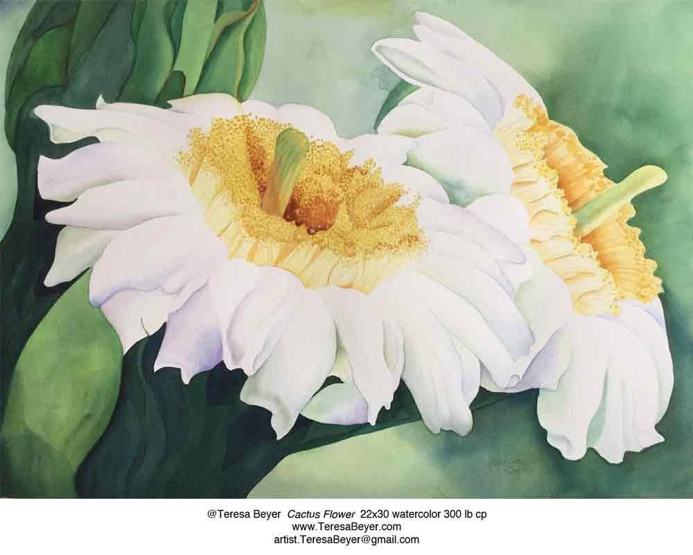 """Cactus Flower"" original fine art by Teresa Beyer"