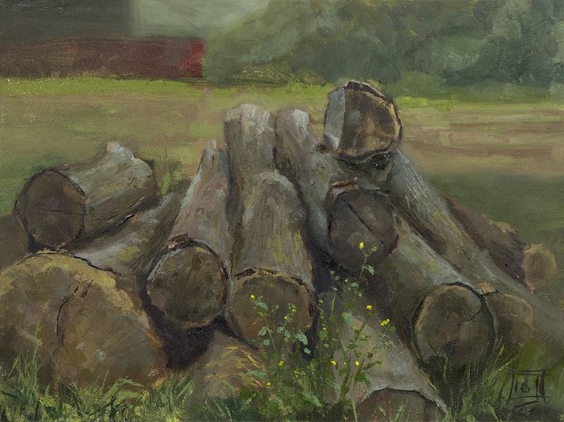 """""""Treetrunks"""" original fine art by Johan Derycke"""