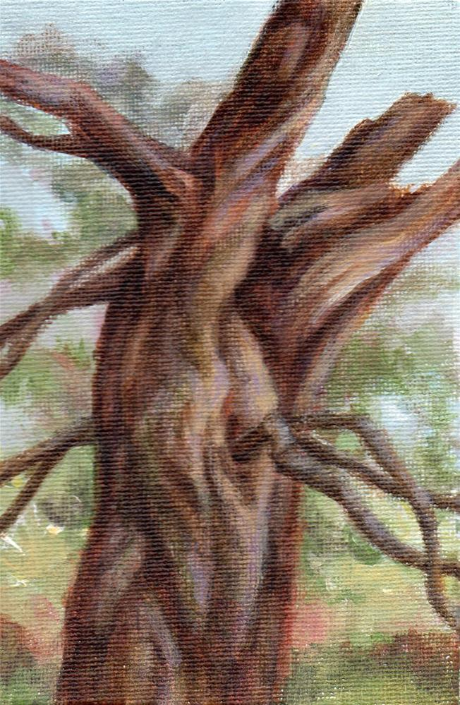"""Reaching Out"" original fine art by Debbie Shirley"