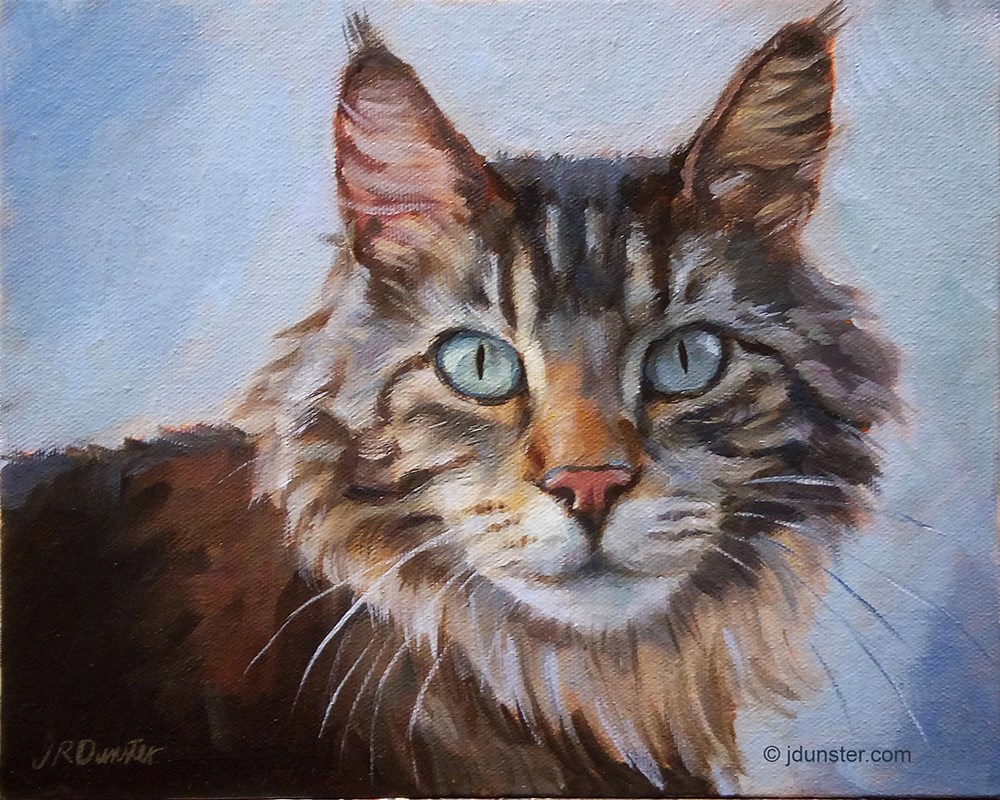 """Beautiful Maine Coon"" original fine art by J. Dunster"