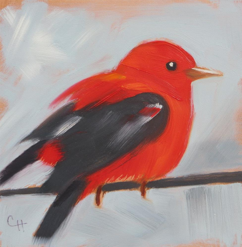"""""""Scarlet Tanager no. 2"""" original fine art by Claire Henning"""