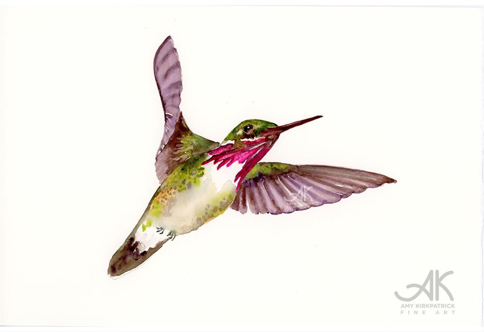 """CALLIOPE HUMMINGBIRD #0468"" original fine art by Amy Kirkpatrick"