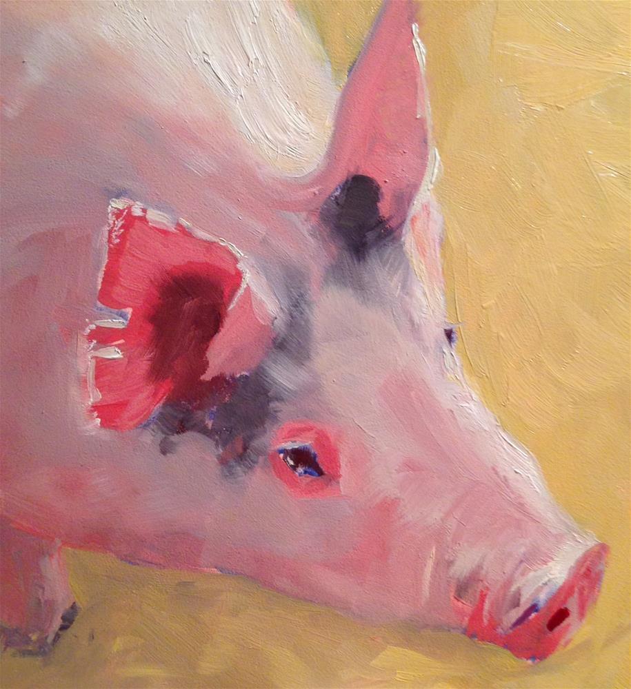 """""""#20 morning light on pig"""" original fine art by Patty Voje"""