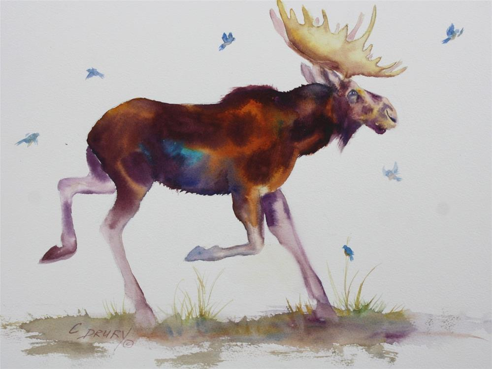 """""""Moose on the Loose"""" original fine art by Colleen Drury"""