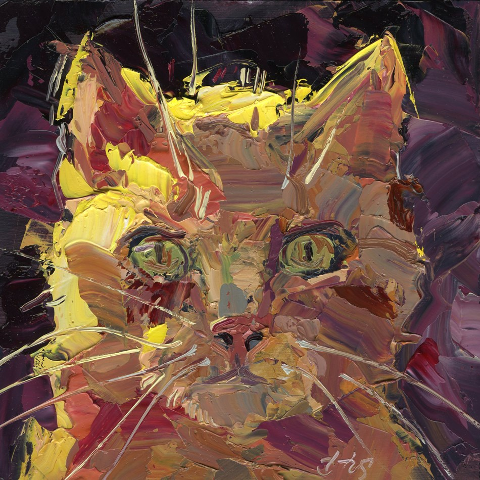 """Orange Tabby"" original fine art by B. Rex Stewart"