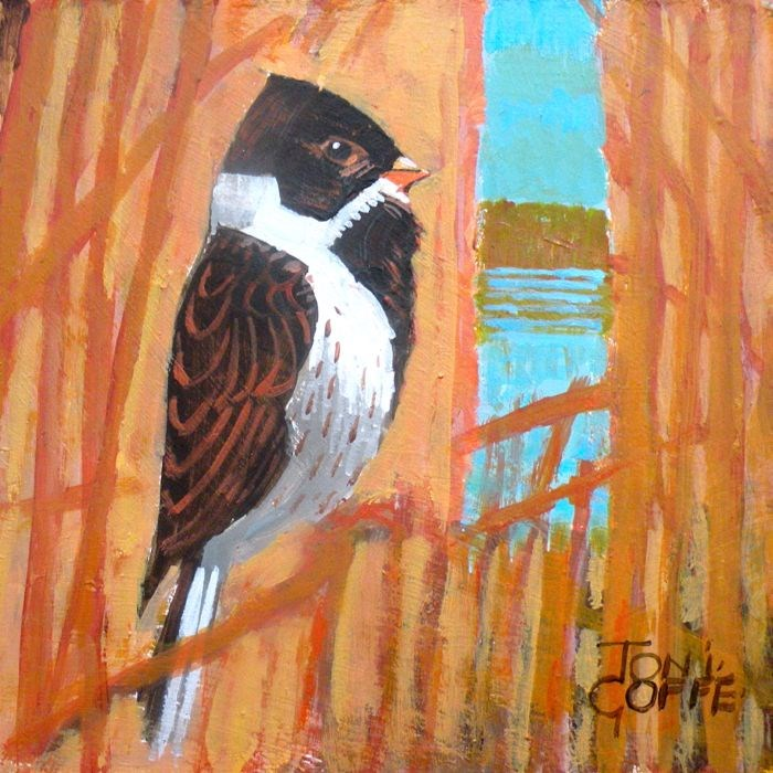 """Reed Bunting"" original fine art by Toni Goffe"