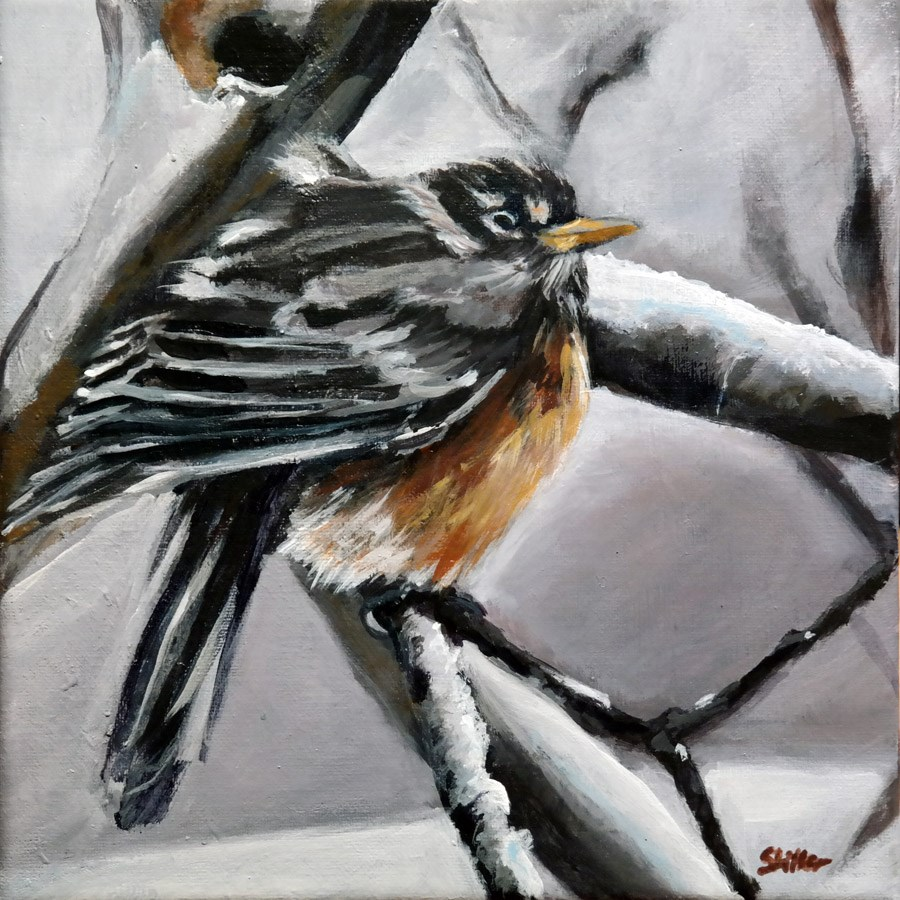 """1564 Young Robin in the Snow"" original fine art by Dietmar Stiller"
