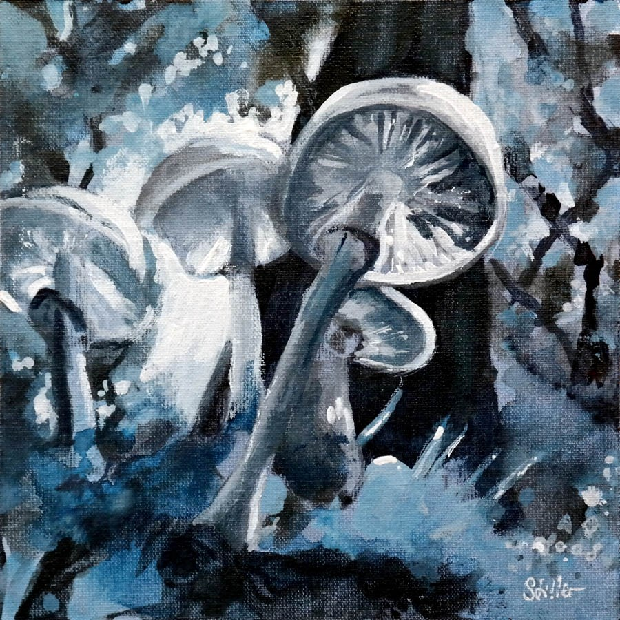 """2260 Mono Mushrooms"" original fine art by Dietmar Stiller"