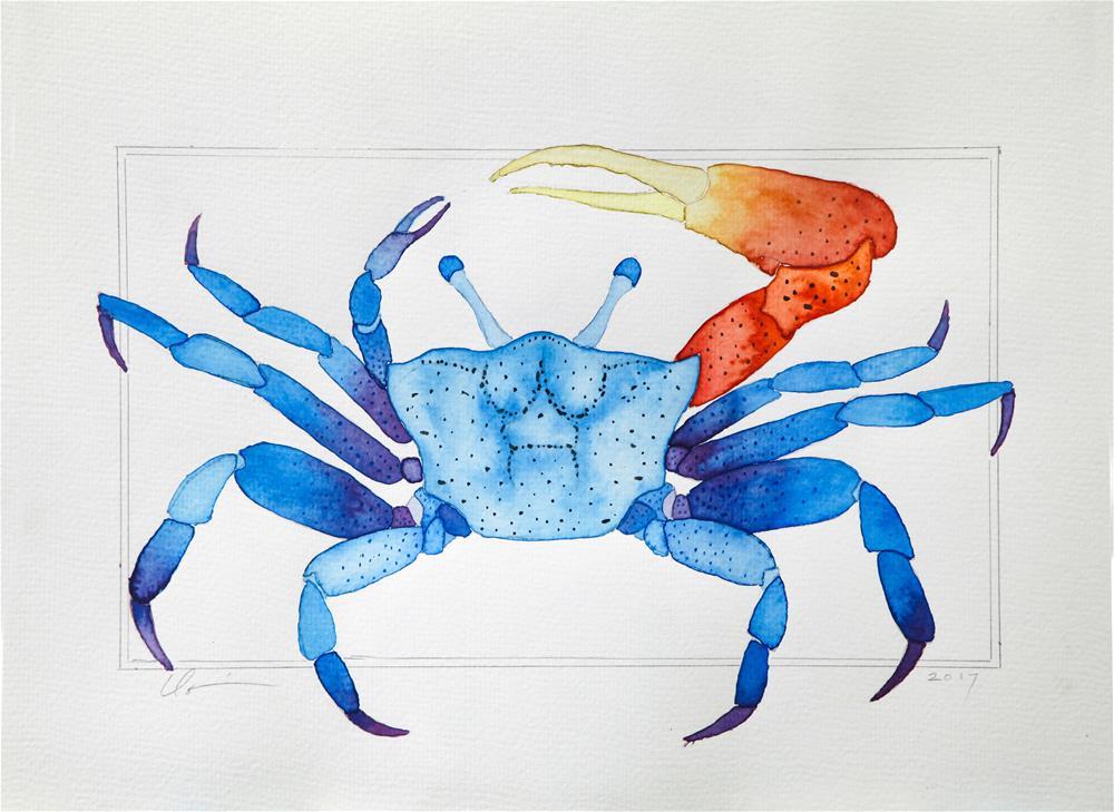 """Fiddler Crab"" original fine art by Clair Hartmann"