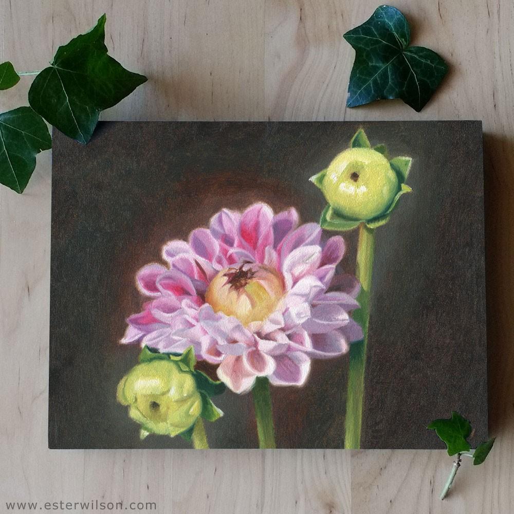"""""""Three Dahlias"""" original fine art by Ester Wilson"""