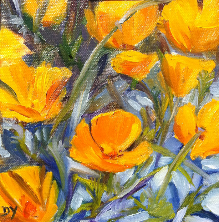 """More California Poppies, 6x6 oil on canvas board"" original fine art by Darlene Young"