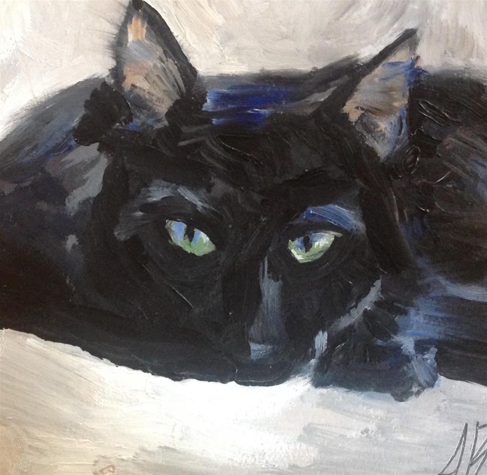 """""""Black Beauty"""" original fine art by Annette Balesteri"""