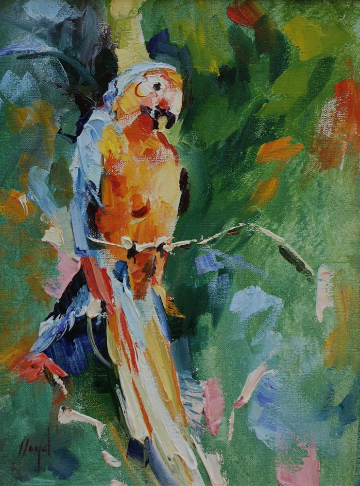 """Parrot"" original fine art by Diane Lloyd"