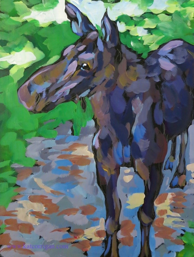 """Young Moose on the Path"" original fine art by Kat Corrigan"