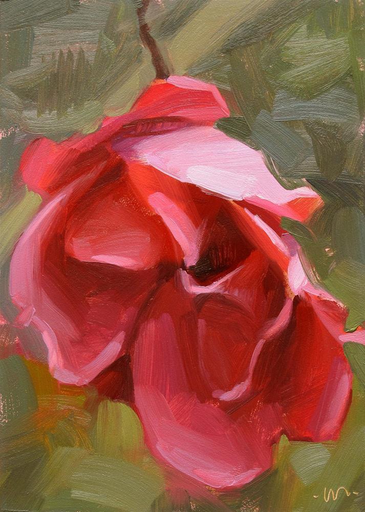 """Late Bloomer"" original fine art by Carol Marine"